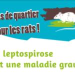 [ARS OI] Attention à la Leptospirose après de fortes pluies à La Réunion !