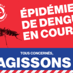 [ARS OI] Malgré l'approche de l'hiver austral, l'épidémie de dengue se poursuit à un rythme élevé